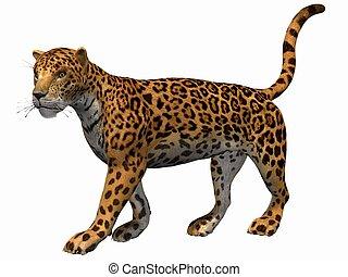 Cliparts Et Illustrations De Jaguar 8 648 Graphiques Dessins Et Illustrations Libres De Droits De Jaguar Disponibles Pour La Recherche Parmi Des Milliers De Fournisseurs De Clip Art Vecteur Eps