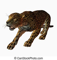 Jaguar - 3D Animal