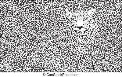 jaguar, plano de fondo, piel