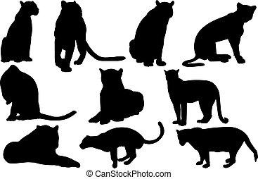 Jaguar Silhouette vector illustration