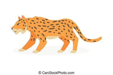 Jaguar, Wild Cat Panther Isolated on White.