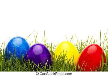jaja, cztery, tło, biały, trawa, wielkanoc