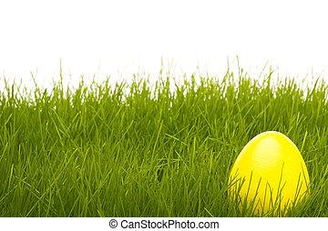 jajko, żółte tło, biały, trawa, wielkanoc