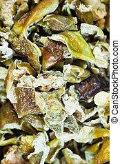 jalapeno spice chili green pepper