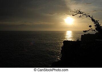 jamaïquain, coucher soleil