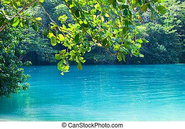 jamaica., a, blaues, lagoon., (popular, nach, schießen, der, film, mit, gleich, name)
