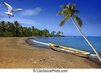 jamaica., a, boot, auf, sandig, kueste, von