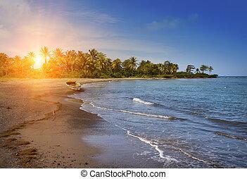 jamaica., a, national, boot, auf, sandig, kueste, von, a, bucht