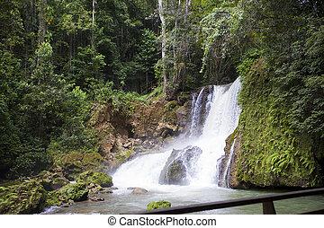 jamaica., dunn's, fluß, wasserfälle