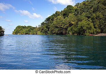 jamaica., meer, lagune, und, tropische vegetation