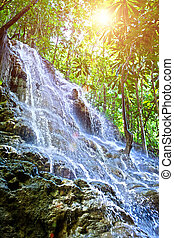 Jamaica. Small waterfall in the jungle. HDR