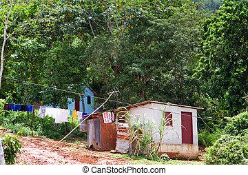 jamaikanisch, daheim