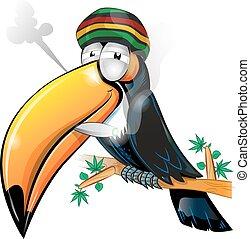 jamaikanisch, tukan, karikatur