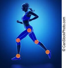 jambe, genou, blessé, regoins, sport, -, cheville, hanche, la plupart