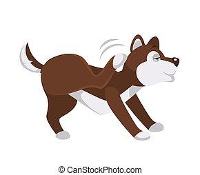 jambe, grattements, chien, derrière, biche, husky, oreille