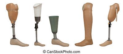 jambe, isolé, prothétique, cinq, fond, blanc