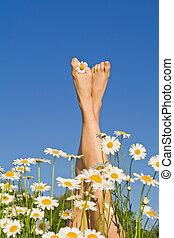 jambes, fleurs, ensoleillé, heureux
