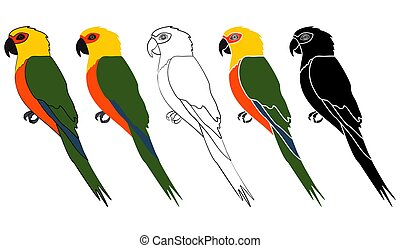 Jandaia bird in profile view - Vector art.
