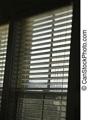janela, com, abertos, blinds.