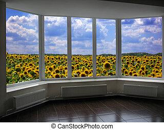 janelas, campo, girassóis, negligenciar, plástico