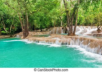 jangle, chute eau, paysage
