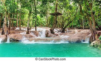 Jangle landscape with waterfall