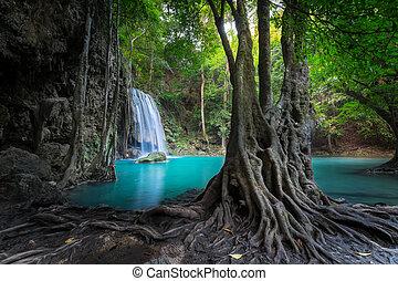 jangle, waterfall., erawan, kanchanaburi, thaiföld, táj