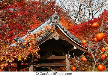 Japan autumn