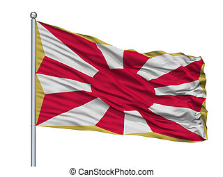 Japan Self Defence Force Flag On Flagpole, Isolated On White...