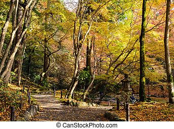 Japanese autumn colored leaves garden in Daigo-ji temple, Kyoto, Japan