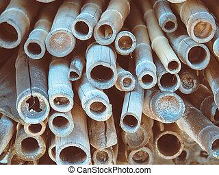 Japanese bamboo background