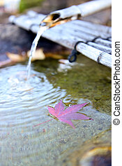 Japanese Bamboo fountain with Autumn Red Maple Leaf