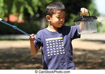 Japanese boy collecting insect (6 years old)