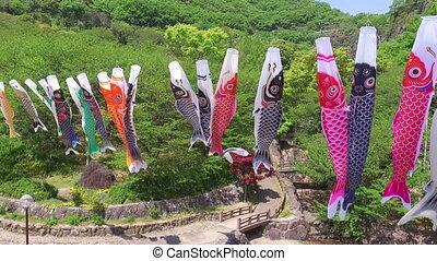 Japanese carp kite streamer decoration, aerial drone flying