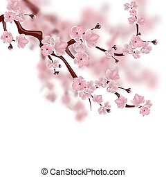 Japanese cherry tree. A branch of pink sakura blossom. Isolated on white background with shades. illustration