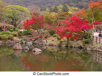 Japanese fall pond