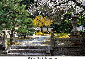 Japanese garden at spring