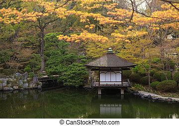 Japanese garden at srping