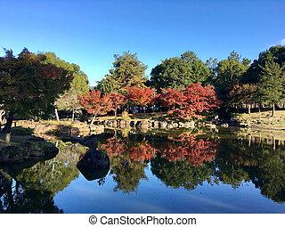 Japanese garden for autumn background.