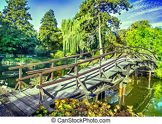 Japanese garden in fall time