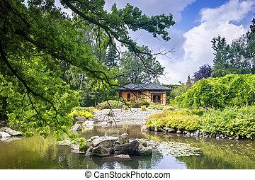 Japanese garden in summer time