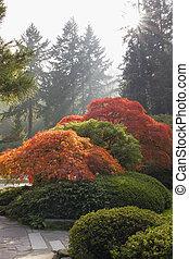 Japanese Garden in the Fall Season