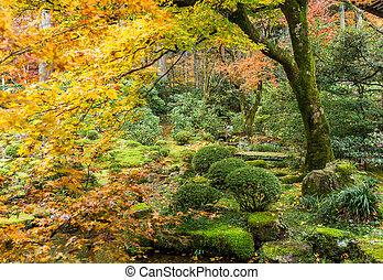 Japanese garden with autuman season