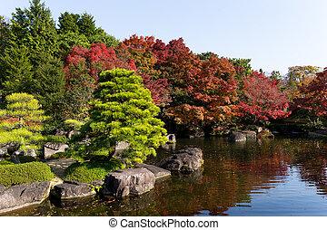 Japanese garden with autumn scene