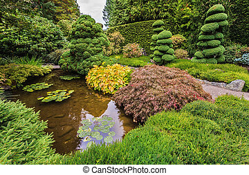 Japanese garden with lilies