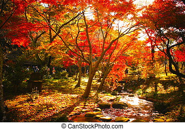 JAPANESE GARDEN with red maple leaves.