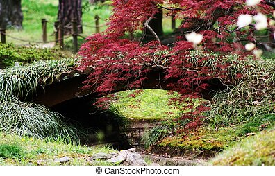 Japanese Gardens Bridge - A scenic view of one of the...