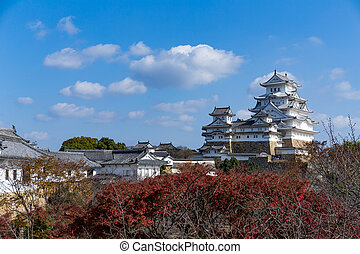 Japanese Himeji castle with maple tree