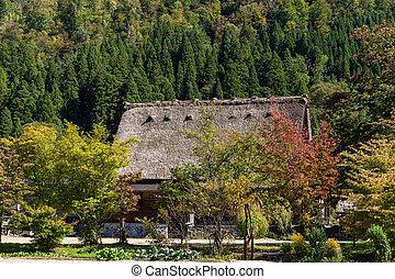 Japanese Historic Villages in Shirakawago