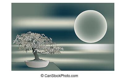 Japanese maple bonsai - Japanese bonsai on landscape with ...
